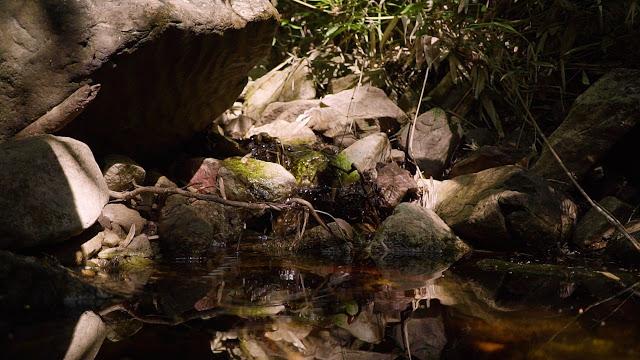 Yamana Gold reutiliza 95% da água em sua operação em Jacobina