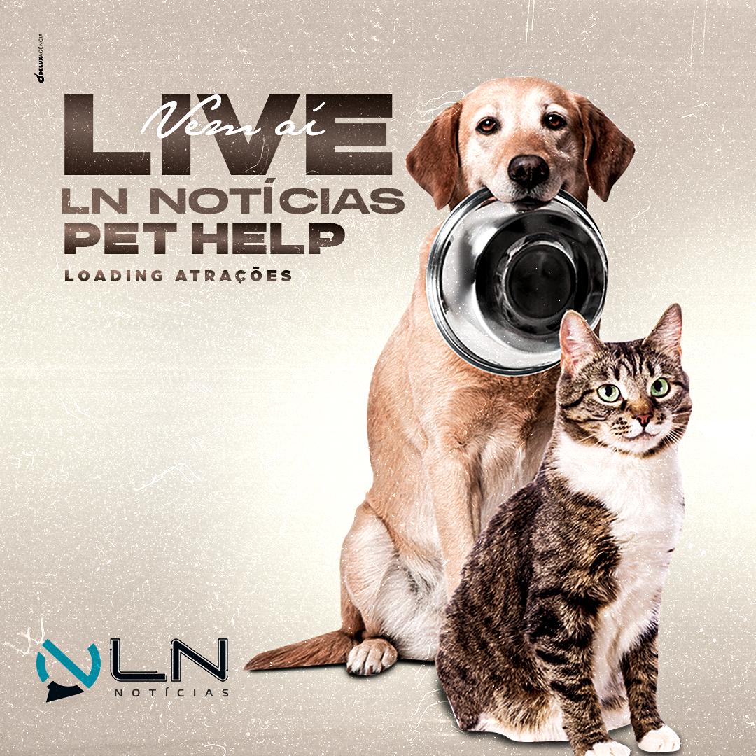 Site LN Notícias promoverá Live Solidária em prol da Causa Animal