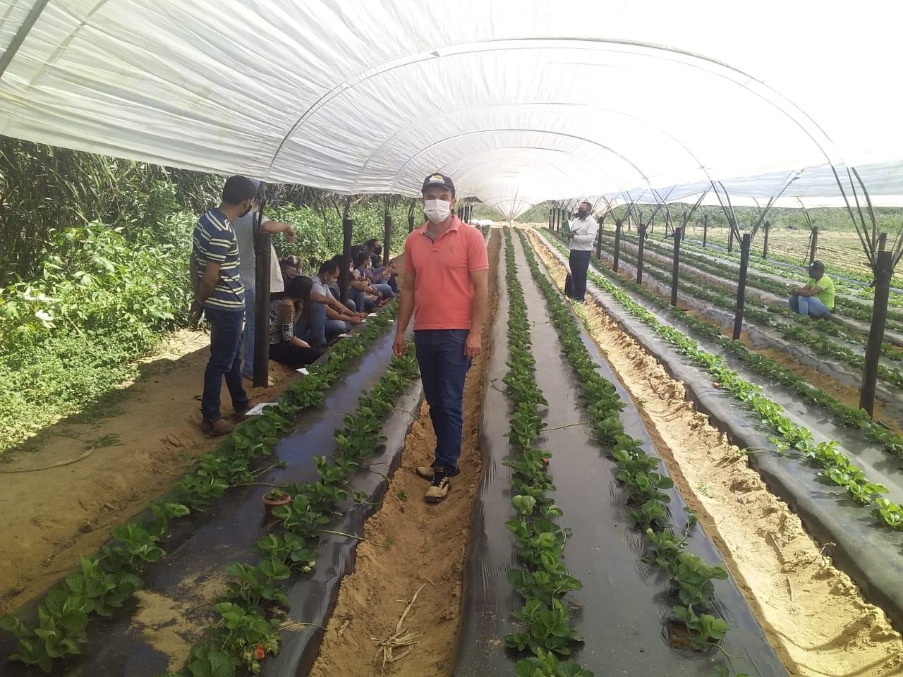 Morro do Chapéu avança no Programa de Incentivo à Produção Orgânica