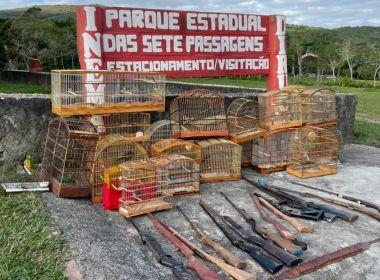 Operação contra crime ambiental resgata mais de 70 pássaros em Miguel Calmon e Jacobina